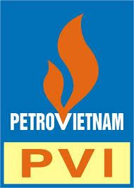 Công ty bảo hiểm PVI Đà Nẵng tuyển dụng (20/06/2015)