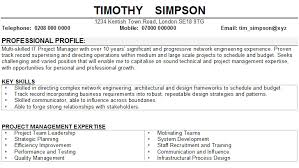 a personal statement Professional CV Writing Services Personal Skills Resumepersonal Skill For Resumes Template