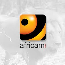 VIDEO:Elephants, Giraffe and Zebra together at the ... - Africam