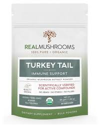 Turkey <b>Turkey Tail Mushroom Extract</b> Powder by Real Mushrooms
