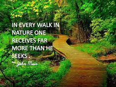 Nature Inspiration on Pinterest   Nature Quotes, Nature and Outdoors