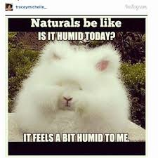 14 Beauty Struggles Only Naturals Understand via Relatably.com