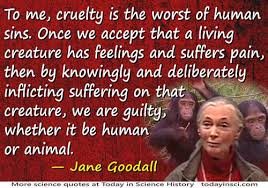 Jane Goodall quote Cruelty is the worst of human sins - medium ...