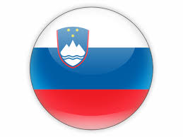 Image result for slovenia flag