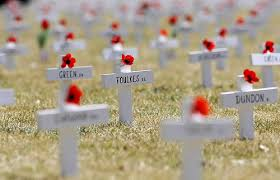 Image result for memorial day flowers