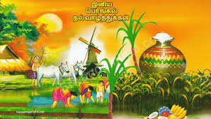 Image result for pongal 2016