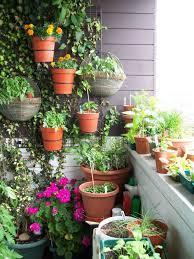 plant bedroom plants px