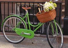 Image result for cruiser bikes with basket