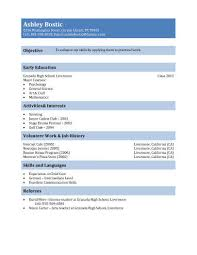 generic teenager resume sample examples of teenage resumes