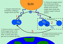 ozone layer ozone layer