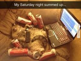 FunnyMemes.com • Cat memes - My Saturday night via Relatably.com