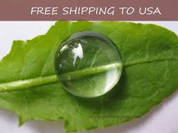 Transparent clear Glass Cabochons, Half Round - <b>50 pcs</b> size ...