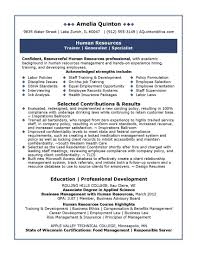 developing resume profile example of resume profile summary new best professional profile resume profile summary for business analyst resume