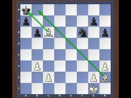 <b>Шахматные</b> задачи. Мат в 1 ход. Урок №2 - YouTube