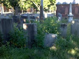 sad city hartford essay a review of the old north cemetery essay a review of the old north cemetery