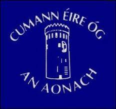 Nenagh Éire Óg GAA Healthy Club Project – building community – be part of the team