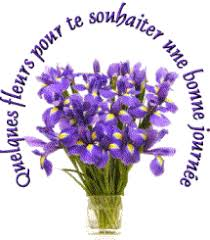 """Résultat de recherche d'images pour """"gifs des iris"""""""