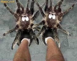 منوا عندها الشجاعة تلبس أحذية زي هكي؟؟ images?q=tbn:ANd9GcQ