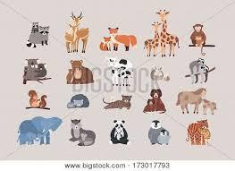 <b>Raccoon</b>, <b>deer</b>, <b>fox</b>, <b>giraffe</b>, monkey, koala, <b>bear</b>, cow, rabbit, sloth ...