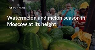 <b>Watermelon</b> and melon season in Moscow at its height / News ...