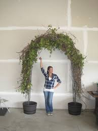Decorating A Trellis For A Wedding For Our Wedding We Made Our Wedding Arch Out Of Grapevine A