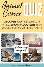 animal career quiz purpose animal check out this animal career quiz answer a series of questions and out your