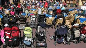 Image result for disney world stroller