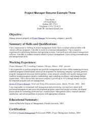 examples of resumes resume template basic objective statement 87 enchanting basic sample resume examples of resumes