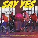 Say Yes! album by NewSong