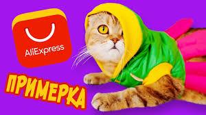 Кошачья ПРИМЕРКА! <b>Одежда для кошки</b> С АЛИЭКСПРЕСС ...