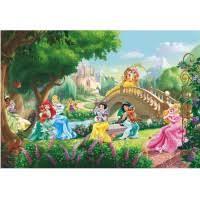 <b>Фотообои бумажные Komar</b> Princess Palace Pets 8-478 3,68х2,54 м