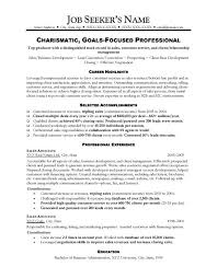 sales resume sample resume samples for sales