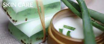 <b>Aloe</b> Vera: The Ultimate Guide   Natural Healers
