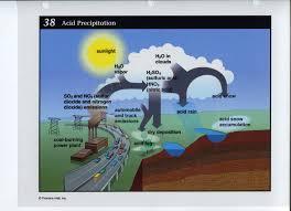 acid rain cycle related keywords  amp  suggestions   acid rain cycle    acid rain cycle related keywords  amp  suggestions   acid rain cycle long tail keywords