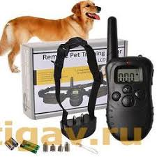Электронный <b>ошейник</b> для собак на батарейках Axsel Fox PT ...