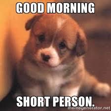 Good morning short person. - cute puppy | Meme Generator via Relatably.com