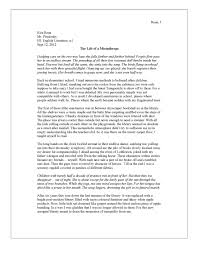 cover letter hero essay examples examples of hero essay hero cover letter my hero essay the life of a misanthropehero essay examples extra medium size