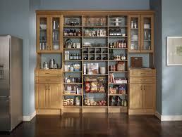 Kitchen Pantry Cabinet Ikea Ikea Kitchen Pantry Ideas Design Idea And Decor