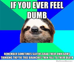 30 Greatest Sloth Memes, Gifs, And Comics | WeKnowMemes via Relatably.com