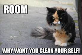 Angry Cat memes   quickmeme via Relatably.com