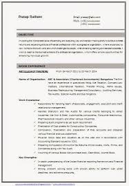 resume format html and cv format