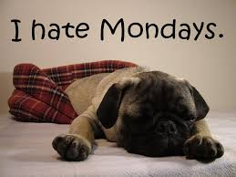 Image result for monday morning