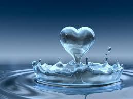 Afbeeldingsresultaat voor hoeveel % bestaan we uit water