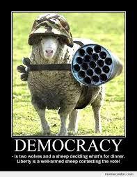 failure of democracy | saboteur365 via Relatably.com