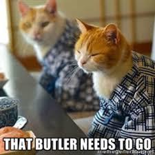 unimpressed kimono cat | Meme Generator via Relatably.com