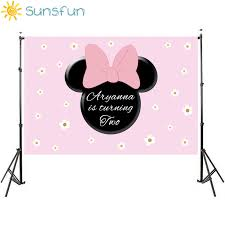 Sunsfun Girls Pink Minnie Backdrop White Flower Baby Shower 1st ...