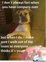 Fart Dog Memes. Best Collection of Funny Fart Dog Pictures via Relatably.com