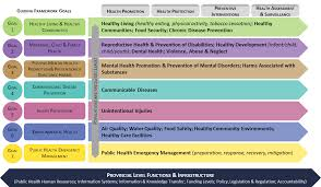 for public health professionals province of british columbia guiding framework goals