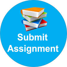 best assignment service assignment help writing help online submit your assignment