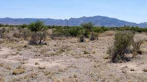 Image result for COCHISE COUNTY ARIZONA..SUNSITES PIC